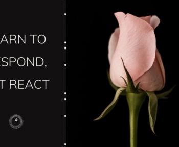 respond vs react spirituality